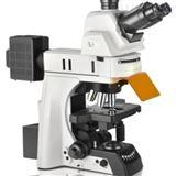 高性能LED多光谱FISH检测显微镜
