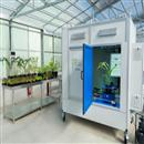 植物表型成像系统